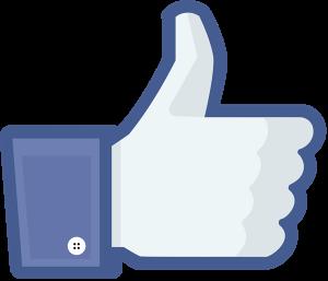 like_thumb-300x257